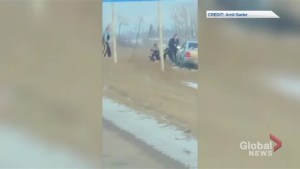 Video shows Alberta RCMP pulling driver from car after low-speed highway pursuit